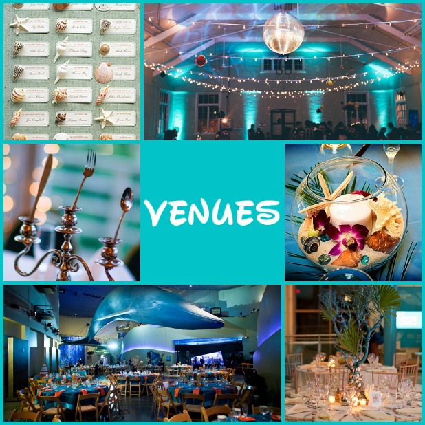 Clockwise from top left: shell placement cards, indoor venue with sea themed lighting, silverware centerpiece, fishbowl centerpiece, aquarium venue, and sea-themed table